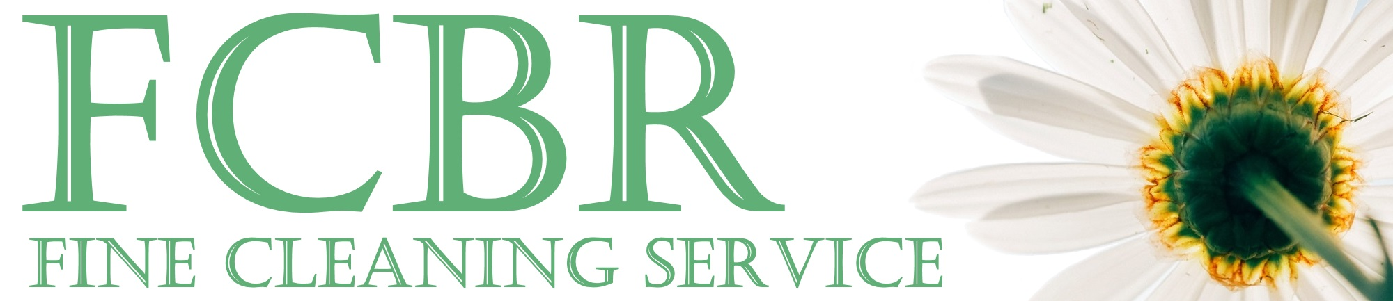 Fine Cleaning Service